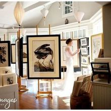 Photo of Blueye Images in Key West, FL