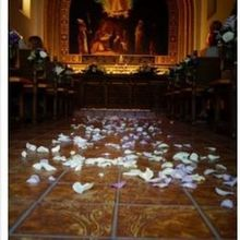 Photo of Weddings In Sedona, Inc. in Sedona, AZ - Add a comment...