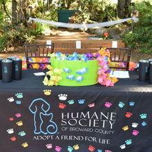 Living Sculpture Sanctuary Venue Fort Lauderdale Fl