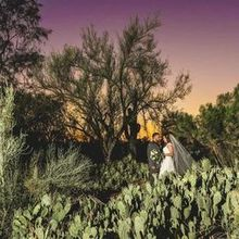 Photo of Signature Wedding Photography in Phoenix, AZ