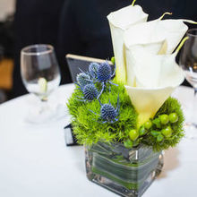 Photo for Brattle Square Florist Review - Cocktail Hour Photos